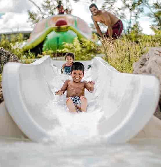 Enfants dans glissade avec tortue, père et végétation