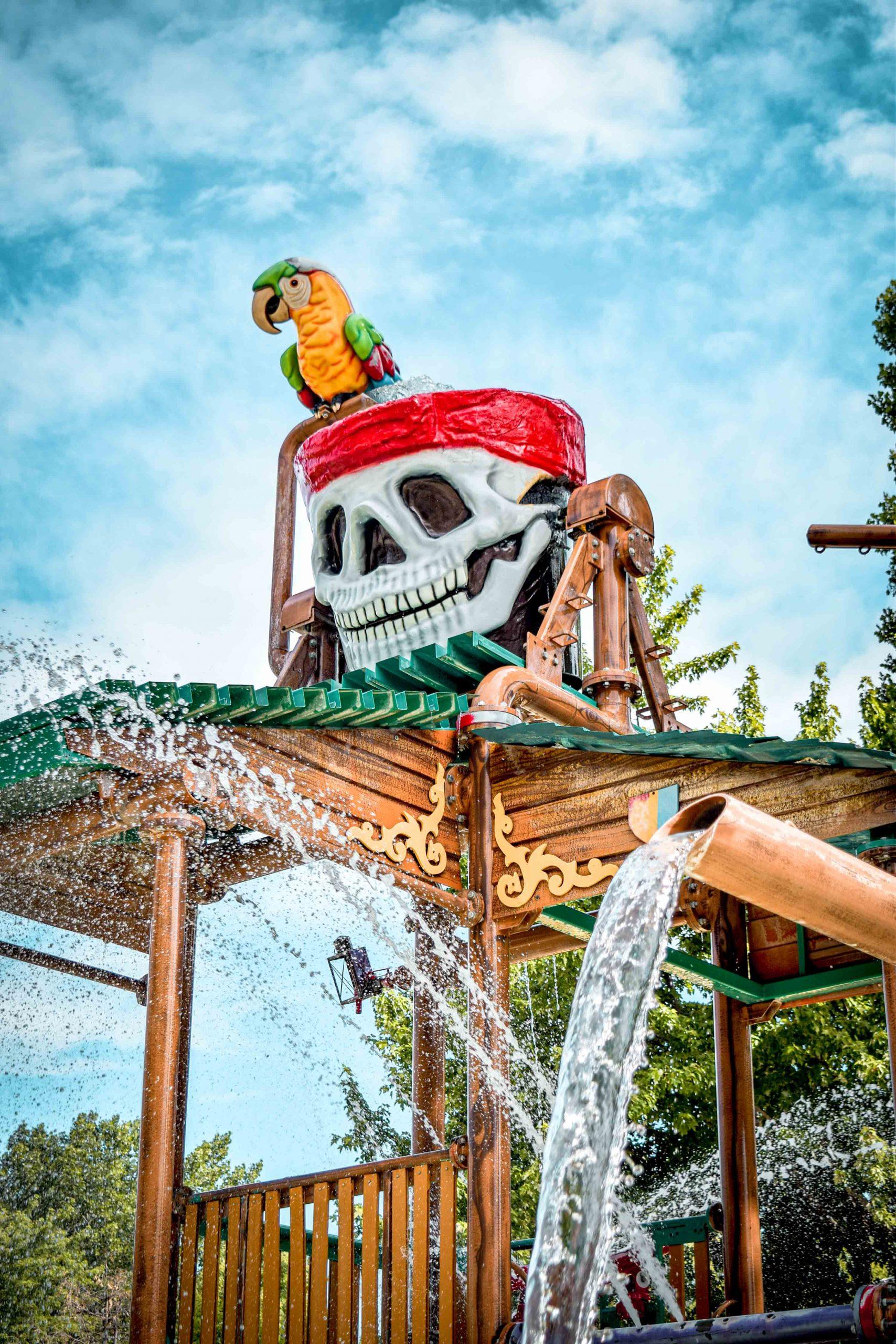 crâne de pirate avec perroquet et jets